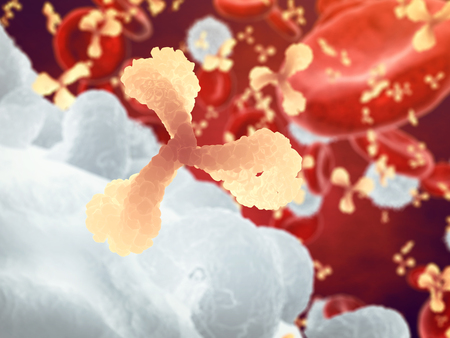 Antibodies and white and red blood cells , Immunoglobulin and plasma cells , Infectious disease and Immune system Stock Photo