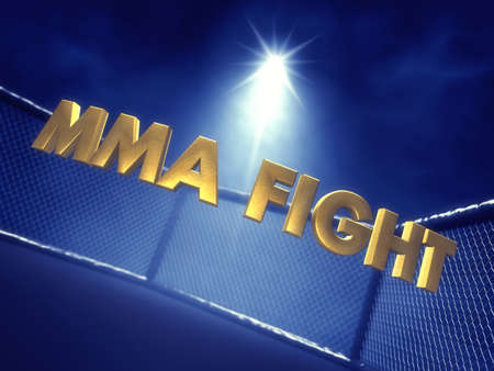 MMA Fight text lit by spotlight , Mixed martial arts fight night event