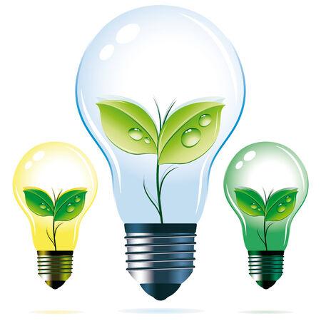 realistic vector eco-friendly symbols: plants inside the bulbs Vector