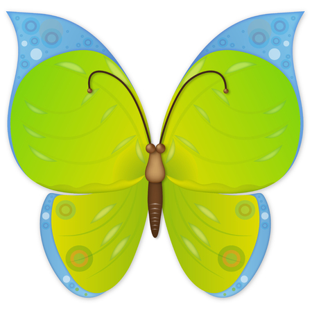 an illustration of butterfly for your design project. Vector