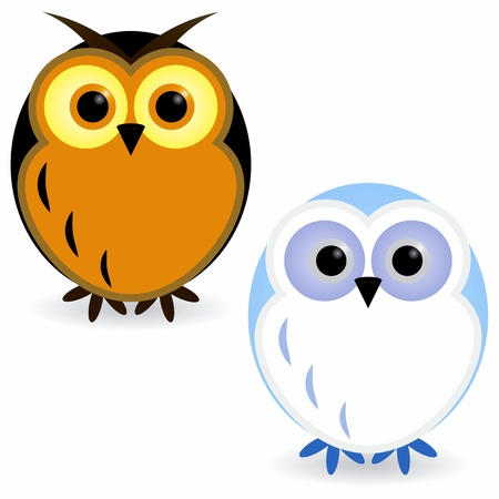 head wise: Two owls