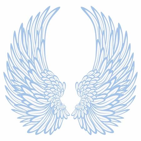 Pair of wings Vector