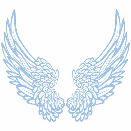 spread wings: Pair of wings