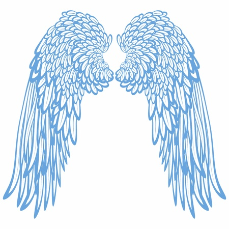 ali di angelo: Paio di ali Archivio Fotografico