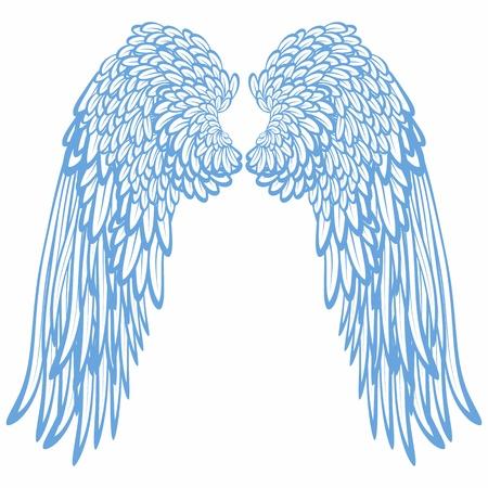 alas de angel: Par de alas  Foto de archivo