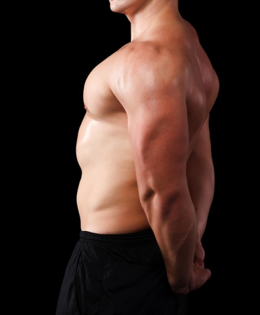 tricep: Muscle male model
