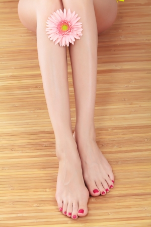 Female legs with pink gerbera flower photo