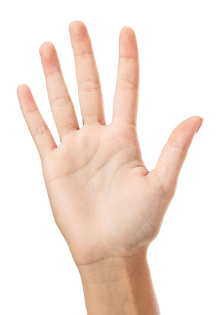 Vrouwelijke hand, witte achtergrond, copyspace