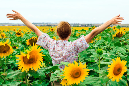 Woman in the sunflower field photo