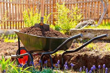 Taczka pełna ziemi w ogrodzie