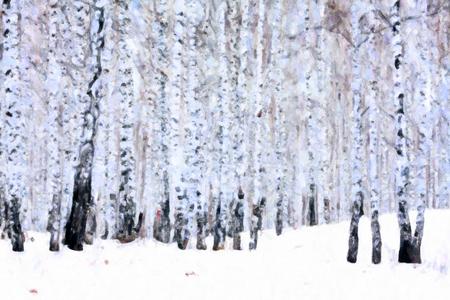 Birch forest in winter, oil paint stylization 免版税图像