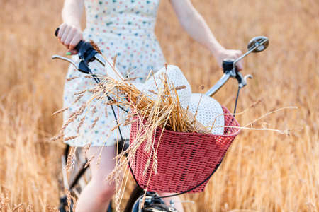 Woman on a bicycle is standing in a field among wheat ears