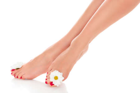 Beautiful female legs with daisy flower isolated on white background