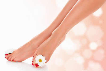 Beautiful female legs with daisy flower on an abstract blurred background.