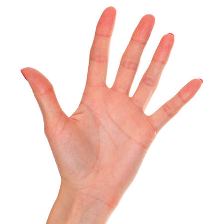 Female hand isolated on a white background Stock Photo