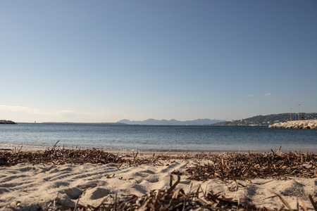 Maritime landscape, view of the bay of juan pines in winter, sandy beach and bed of posidonia in the foreground and Cannes, Mandelieu La Napoule and Golf Juan in the background