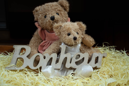 2 teddies with the word happiness in wood - sweetness of feelings (happiness is happiness writtent in French)