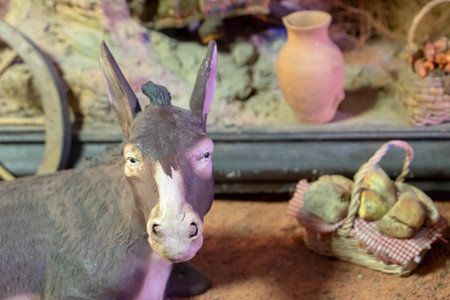 Donkey in a Christmas crib