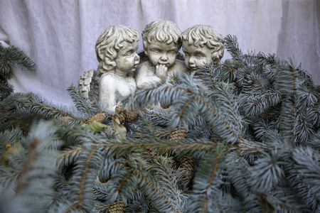 3 cherubs in pine branches, christmas decor