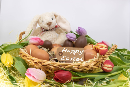 Easter Bunny wishes you in English from Happy Easter
