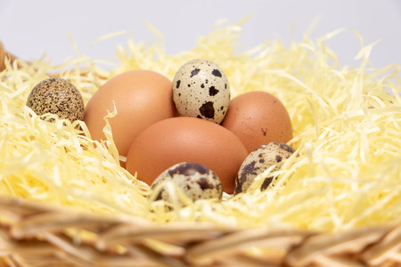 Farm eggs in a straw basket. Egg of Hen and Egg of Quail