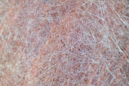 Fiberglass filament surface texture background Stock Photo
