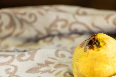 Whole quince with yellow fluffy skin background 写真素材 - 131845189