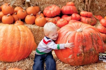 adorable Kind umarmt einen riesigen Kürbis