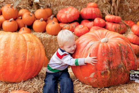 huge: adorable toddler is hugging a huge pumpkin Stock Photo
