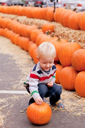adorable caucasian toddler picking up a pumpkin photo