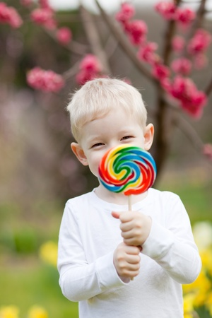 cute toddler holding big colorful lollipop in a blooming park photo
