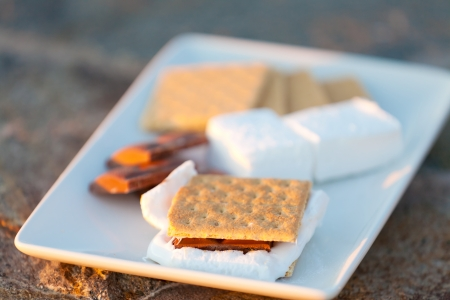 smores, marshmallow, chocolate and graham crackers ready on plate, shallow DOF photo