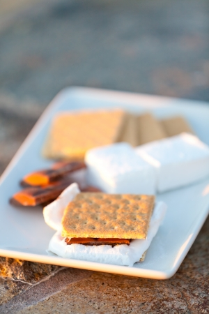 smores and its ingredients on the plate photo