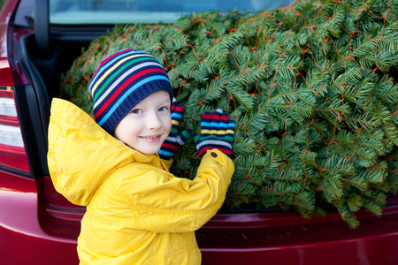 holding a christmas ornament: cheerful little boy holding christmas tree Stock Photo