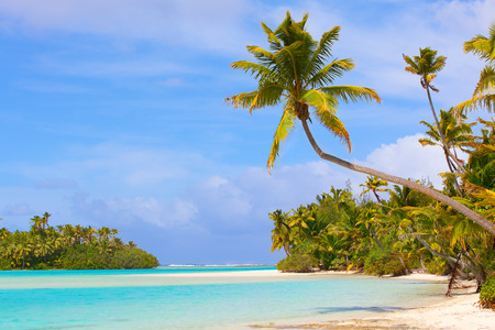 motu: picture perfect beach at cook islands Stock Photo