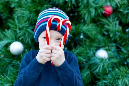 happy little boy holding candy canes at christmas time photo