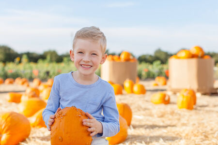 smiling little boy holding pumpkin while having fun at pumpkin patch at fall photo