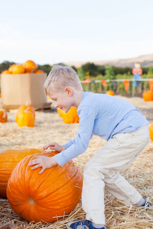 active little boy having fun at pumpkin patch photo