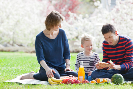 family with three children: family of three at the picnic in the park at spring