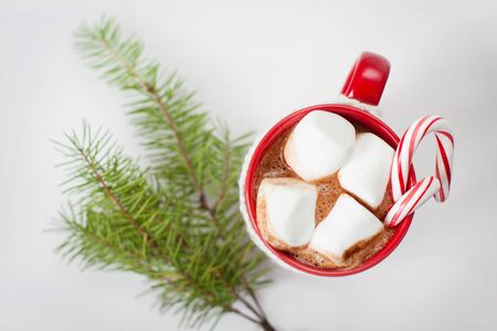 sweet table: close-up of cup with hot cocoa, marshmallows and candy canes with christmas tree sprig