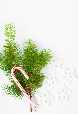 christmas theme with candy cane christmas tree sprig and star