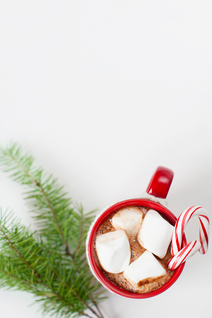 hot chocolate drink: close-up of cup with hot cocoa, marshmallows and candy canes with christmas tree sprig