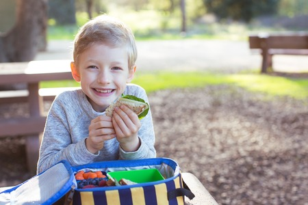 recess: smiling schoolboy enjoying recess and healthy lunch Stock Photo