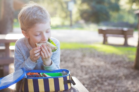 recess: beautiful schoolboy eating sandwich for lunch during recess time at school