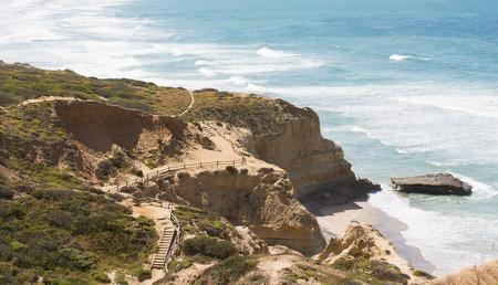 Vista di belle scogliere sulla costa della california meridionale, torrey pini dichiarano la riserva naturale