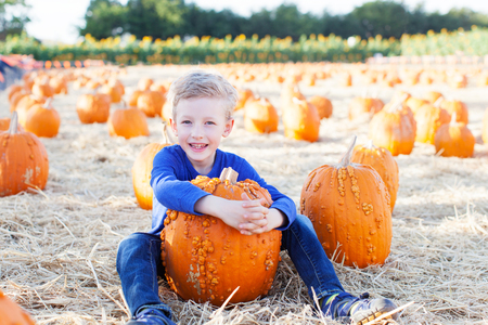 cute halloween: positive smiling boy holding pumpkin and enjoying pumpkin patch Stock Photo