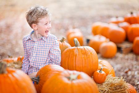 cheerful positive boy enjoying autumn time at pumpkin patch Stock Photo