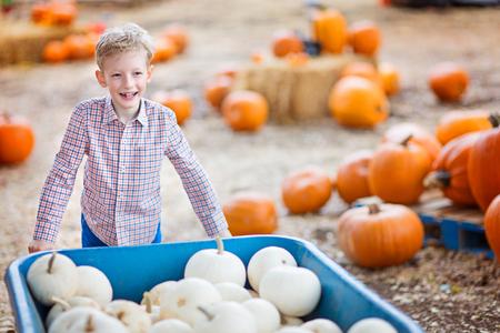 Chico positivo alegre disfrutando de tiempo de otoño en parche de calabaza empujando carrito lleno de calabazas Foto de archivo - 87923770