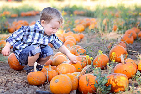cute positive little boy holding pumpkin enjoying fall activities at pumpkin patch, halloween and autumn time concept, copy space on the right