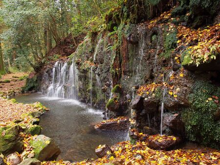 Japanese waterfall in Hakone